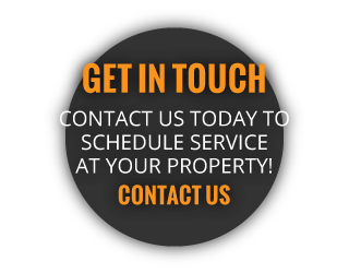 GET IN TOUCH | CONTACT US TODAY TO SCHEDULE SERVICE AT YOUR PROPERTY | CONTACT US